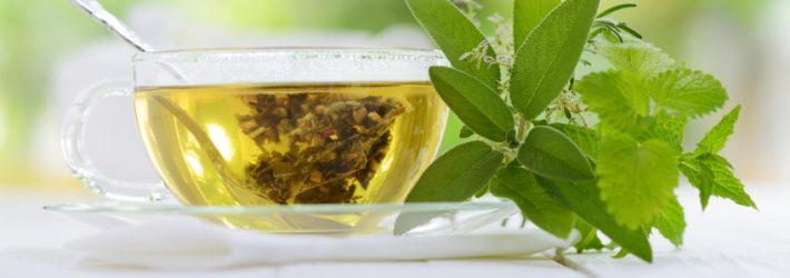 Le thé vert bon pour le corps