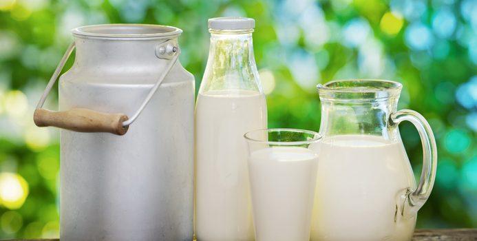 Le calcium: Pourquoi est il important pour l'organisme?